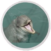 Dolphin Round Beach Towel