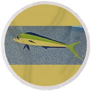 Dolphinfish Inlay On Alabama Welcome Center Floor Round Beach Towel