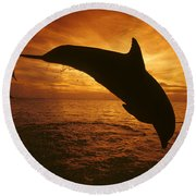 Dolphins And Sunset Round Beach Towel