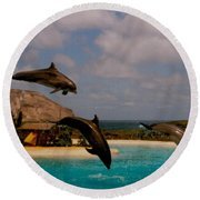 Dolphins Fly Round Beach Towel