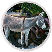 Donkey And Old Tractor Round Beach Towel