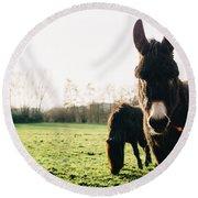 Donkey And Pony Round Beach Towel