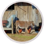 Donkey Goat And Chickens Round Beach Towel