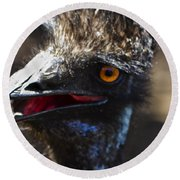 Dont Mess With The Emu Round Beach Towel