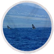 Double Breach Round Beach Towel