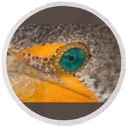 Double-crested Cormorant's Emerald Eye Round Beach Towel