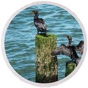 Double-crested Cormorants Round Beach Towel