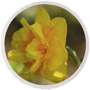 Double Daffodil Round Beach Towel