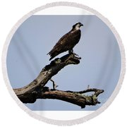 Double Perches Round Beach Towel