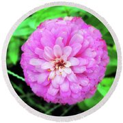 Double Pink Zinnia Round Beach Towel