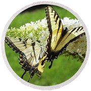 Double The Pleasure - Eastern Tiger Swallowtails Round Beach Towel