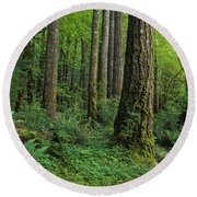 Douglas-fir Round Beach Towel