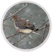 Dove In The Snow Round Beach Towel