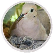 Doves In Planter Round Beach Towel