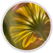 Down Among The Daisys Round Beach Towel