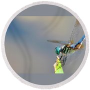 Dragon Flyer Round Beach Towel