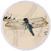Dragonfly 5 Round Beach Towel