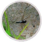 Dragonfly A Round Beach Towel