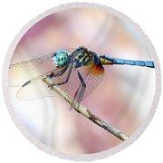 Dragonfly In Balance Round Beach Towel