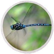 Dragonfly In Flight 2 Round Beach Towel