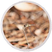 Dragonfly Karaoke Round Beach Towel