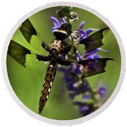 Dragonfly On Salvia Round Beach Towel