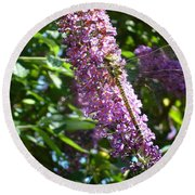 Dragonfly On The Butterfly Bush Round Beach Towel
