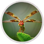 Dragonfly Pitstop Round Beach Towel