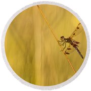 Dragonfly Pole Dance Round Beach Towel