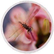 Dragonfly Serenity Round Beach Towel