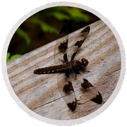 Dragonfly Spots Round Beach Towel