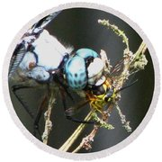 Dragonfly With Yellowjacket 3 Round Beach Towel