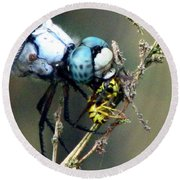 Dragonfly With Yellowjacket 5 Round Beach Towel