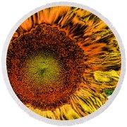 Dramatic Sunflower Round Beach Towel