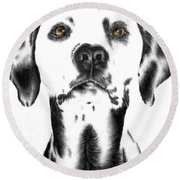 Drawing Of A Dalmatian Dog Round Beach Towel