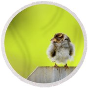 Dream Sparrow Round Beach Towel