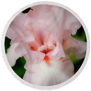 Dreamy Pink Iris Round Beach Towel