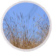 Dried Grass Blue Sky Round Beach Towel