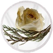 Dried White Rose Round Beach Towel
