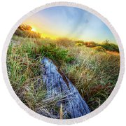 Driftwood At The Dunes Round Beach Towel