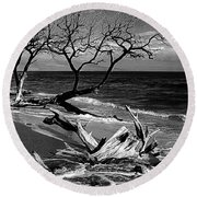Driftwood Bw Fine Art Photography Print Round Beach Towel