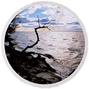 Driftwood Dragon-barnegat Bay Round Beach Towel