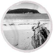 Driftwood On Beach Black And White Round Beach Towel