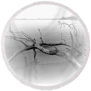 Driftwood Vignette - Grayscale Round Beach Towel