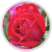 Dripping In Beauty - Double Knock Out Rose Round Beach Towel