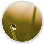 Droplet On The Blade Of Grass A Round Beach Towel