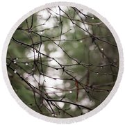Droplets On Branches Round Beach Towel