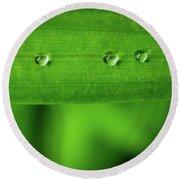 Droplets On Grass Round Beach Towel