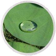 Drops On Lotus Leaf Round Beach Towel