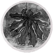 Dry Leaf Collection Bnw 1 Round Beach Towel